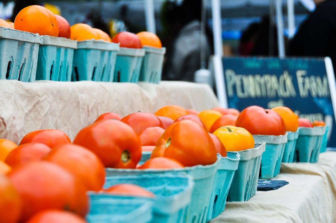 ドライトマトはリコピン4倍?天日干し&オーブンで手作りして栄養UP!