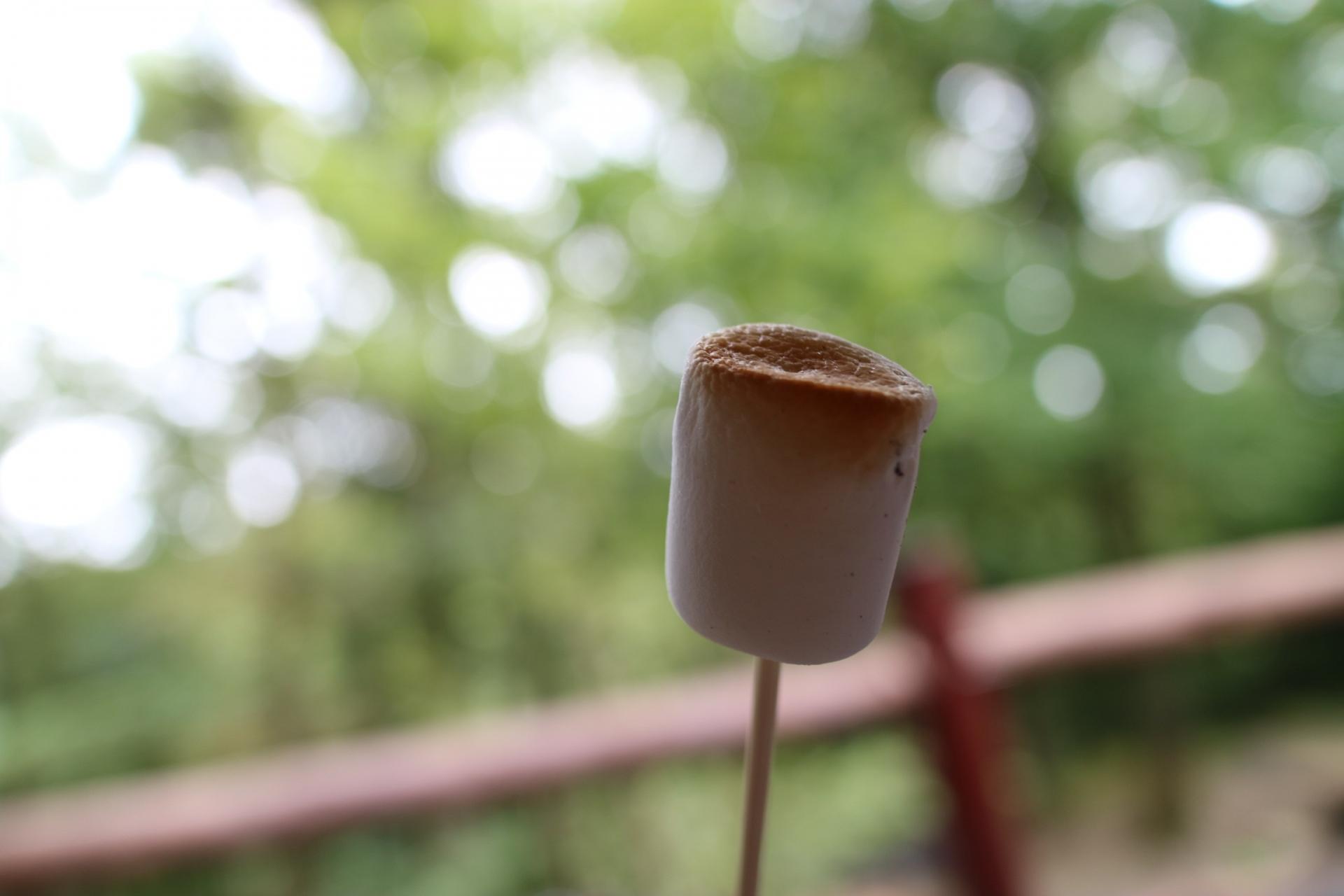 バーベキューの食材アイデア 簡単おしゃれ変わり種にデザートも♪